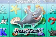 crazy-shark-suncity-situs-judi-live-casinos-online-terpercaya-indonesia-2020